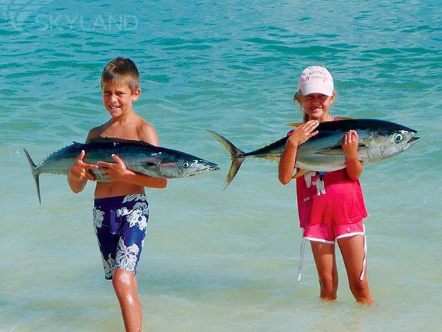 места для рыбалки на сейшелах